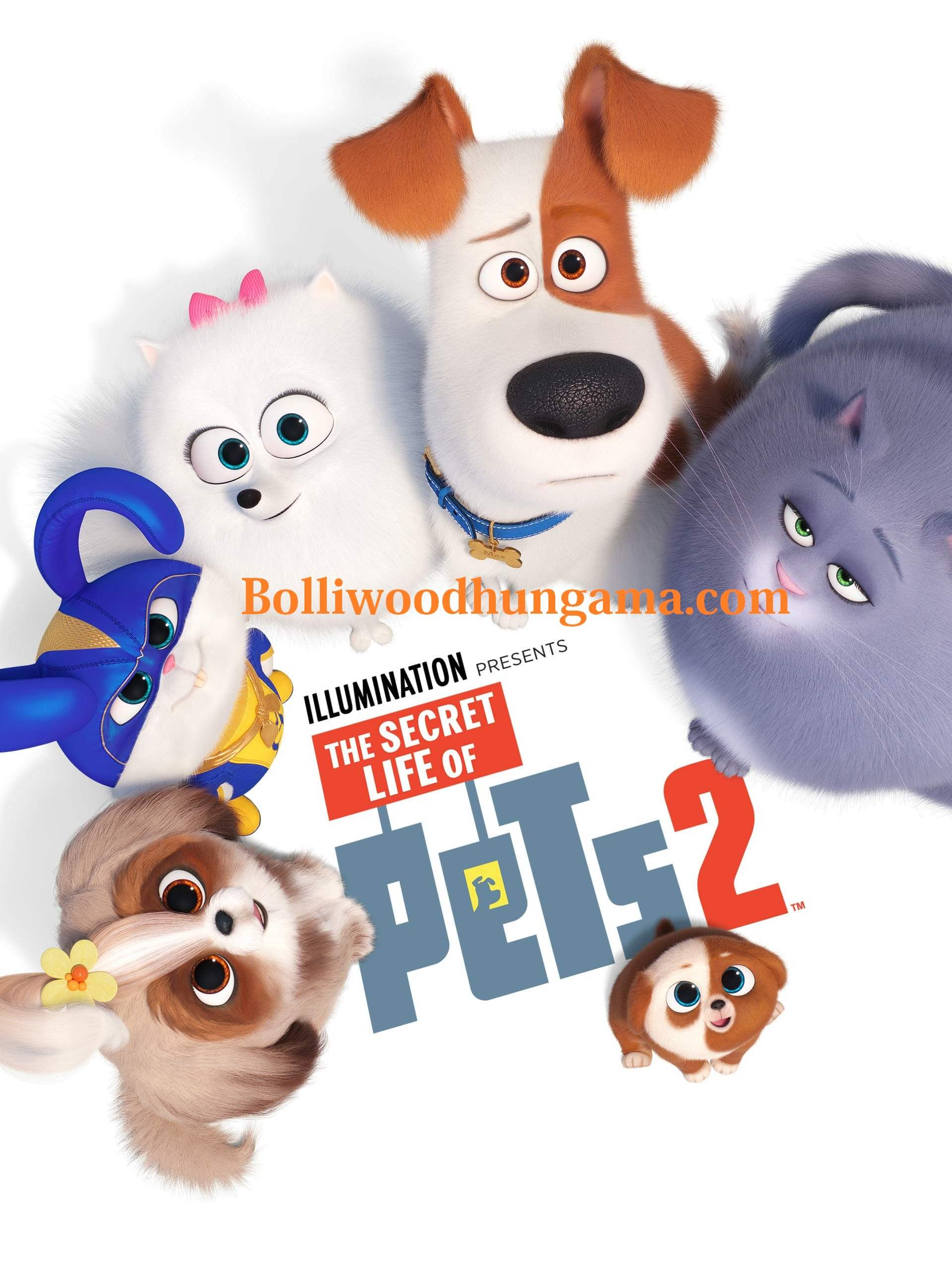 Bolliwood Hungama, Bolliwoodhungama.com, Movies for Download, New Movies For Download, the secret life of pets 2 cast, the secret life of pets 2 trailer, the secret life of pets full movie, the secret life of pets 1, the secret life of pets cast the secret life of pets full movie 2017, secret life of pets 2 release date uk, secret life of pets 2 dvd release date